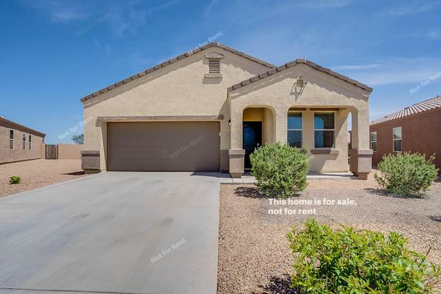 29179 N Star Sapphire Lane, San Tan Valley, AZ 85143 (MLS #6063032) :: The Daniel Montez Real Estate Group