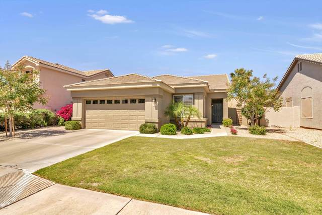 1460 W Armstrong Way, Chandler, AZ 85286 (MLS #6063036) :: Lux Home Group at  Keller Williams Realty Phoenix