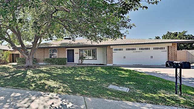 2908 N Evergreen Street, Chandler, AZ 85225 (MLS #6063049) :: BIG Helper Realty Group at EXP Realty
