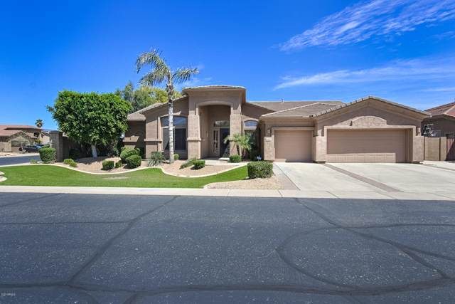 1773 S Comanche Drive, Chandler, AZ 85286 (MLS #6063060) :: BIG Helper Realty Group at EXP Realty