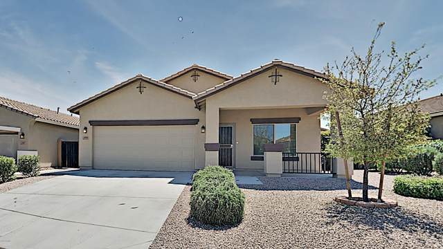 1351 E Eucalyptus Lane, San Tan Valley, AZ 85143 (MLS #6063063) :: The Daniel Montez Real Estate Group