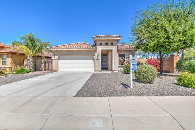 2686 E Clifton Avenue, Gilbert, AZ 85295 (MLS #6063079) :: Conway Real Estate