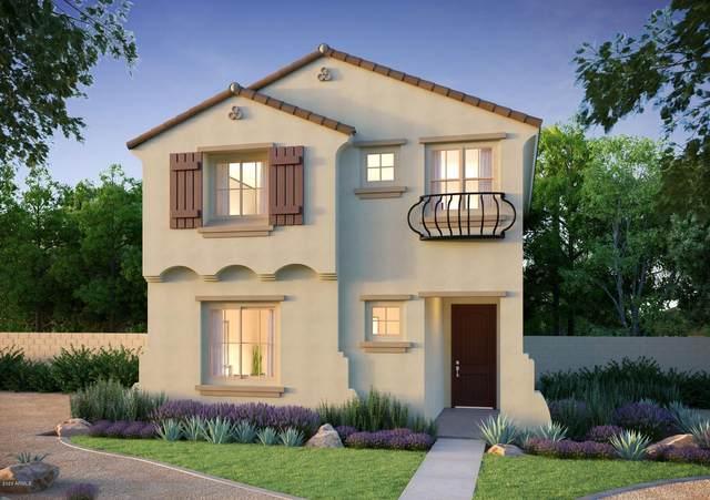 1809 N 209TH Avenue, Buckeye, AZ 85396 (MLS #6063113) :: Service First Realty