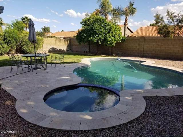 1173 E Erie Street, Chandler, AZ 85225 (MLS #6063205) :: Lux Home Group at  Keller Williams Realty Phoenix