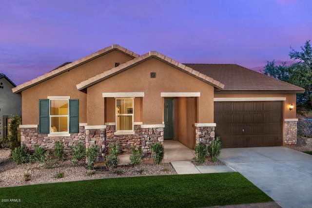 20181 N Laural Road, Maricopa, AZ 85138 (MLS #6063238) :: Arizona Home Group