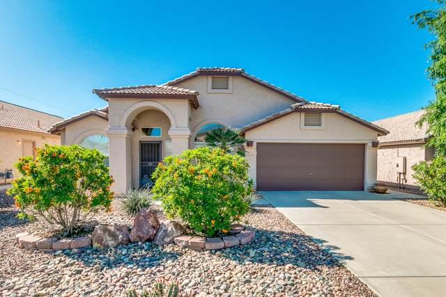 1123 E Mohawk Drive, Phoenix, AZ 85024 (MLS #6063324) :: Lux Home Group at  Keller Williams Realty Phoenix