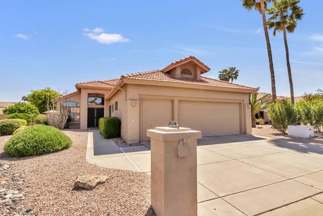 10909 E Silvertree Drive, Sun Lakes, AZ 85248 (MLS #6063326) :: Lux Home Group at  Keller Williams Realty Phoenix