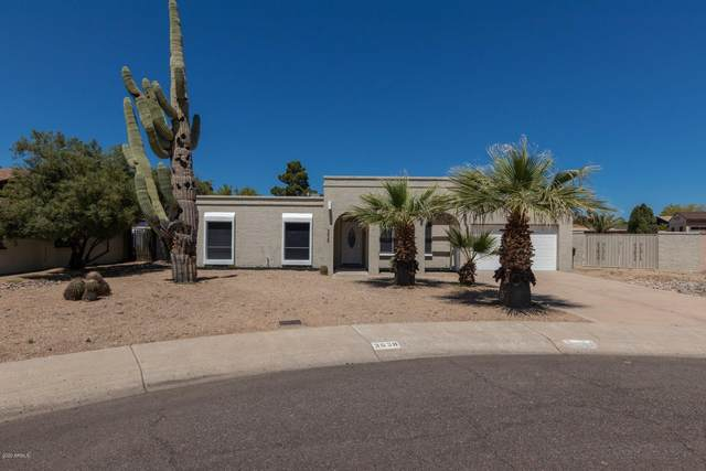 3638 W Hartford Avenue, Glendale, AZ 85308 (MLS #6063336) :: Conway Real Estate