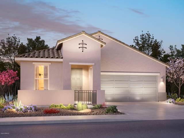 41811 W Mesquite Road, Maricopa, AZ 85138 (MLS #6063368) :: Revelation Real Estate