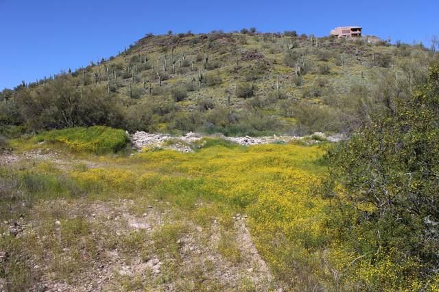 3101 W Joy Ranch Road, Phoenix, AZ 85086 (MLS #6063381) :: CC & Co. Real Estate Team