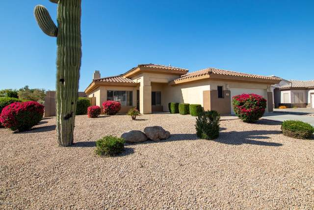 2690 N 132ND Drive, Goodyear, AZ 85395 (MLS #6063386) :: The Luna Team