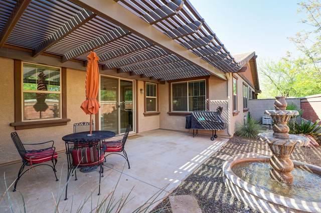 15311 W Columbine Drive, Surprise, AZ 85379 (MLS #6063403) :: Revelation Real Estate