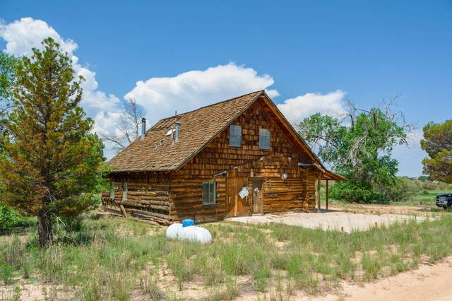 2490 N Tree Farm Lane, Chino Valley, AZ 86323 (MLS #6063438) :: Kortright Group - West USA Realty