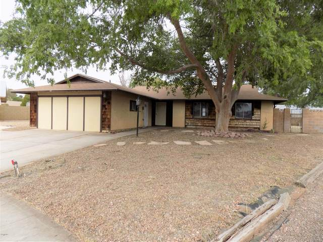 3612 W Crocus Drive, Phoenix, AZ 85053 (MLS #6063440) :: Conway Real Estate