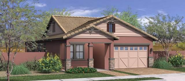 3438 E Pinto Drive, Gilbert, AZ 85296 (MLS #6063445) :: The Daniel Montez Real Estate Group