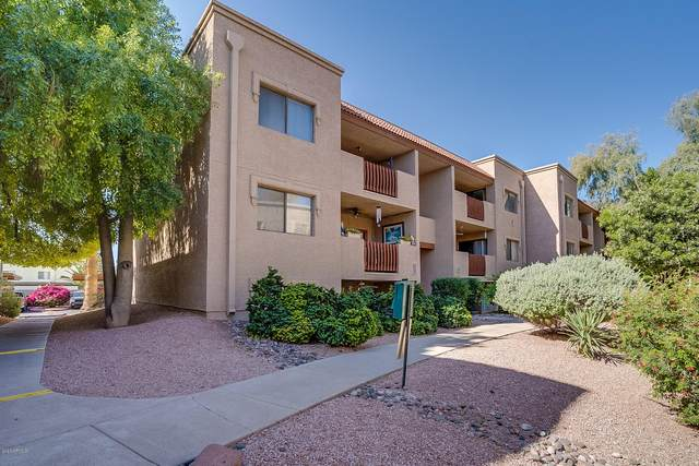 3031 N Civic Center Plaza #316, Scottsdale, AZ 85251 (MLS #6063450) :: Conway Real Estate