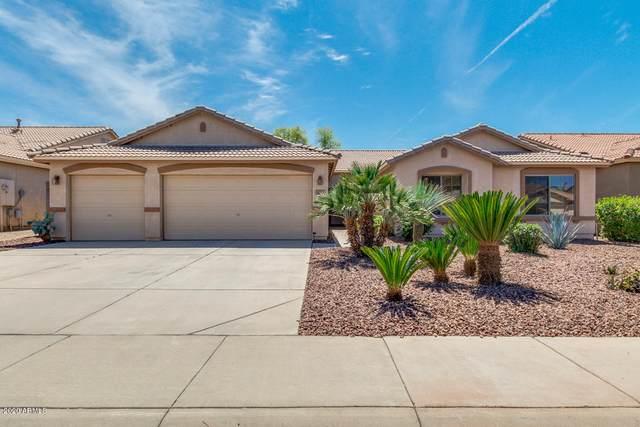 4163 E Camden Avenue, San Tan Valley, AZ 85140 (MLS #6063478) :: Dijkstra & Co.