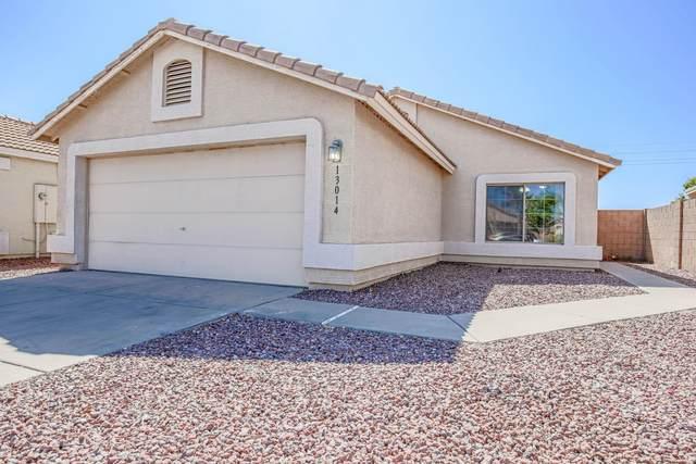 13014 N 130th Lane, El Mirage, AZ 85335 (MLS #6063553) :: Conway Real Estate