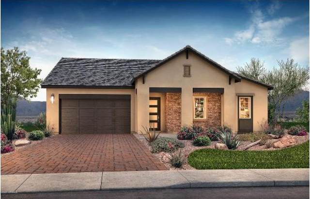 19049 S 211TH Place, Queen Creek, AZ 85142 (MLS #6063560) :: Conway Real Estate
