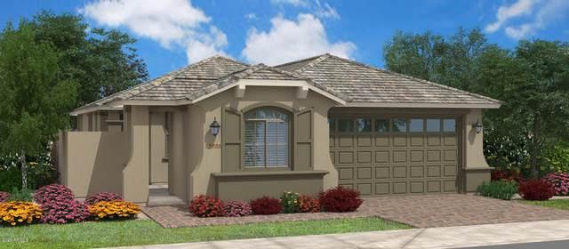2893 W Blue River Drive, San Tan Valley, AZ 85142 (MLS #6063566) :: Selling AZ Homes Team