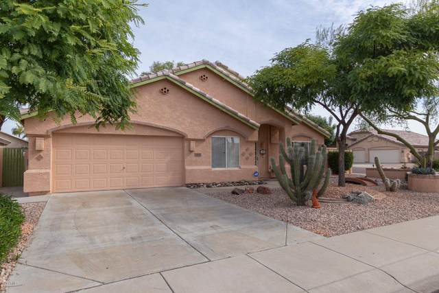9142 W Lockland Court, Peoria, AZ 85382 (MLS #6063589) :: Dave Fernandez Team | HomeSmart