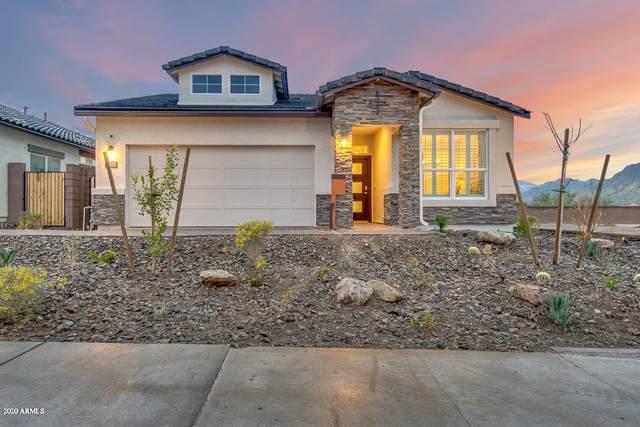16512 W Winston Drive, Goodyear, AZ 85338 (MLS #6063632) :: The Garcia Group