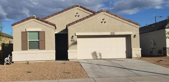 3481 N 309TH Lane, Buckeye, AZ 85396 (MLS #6063642) :: Lifestyle Partners Team
