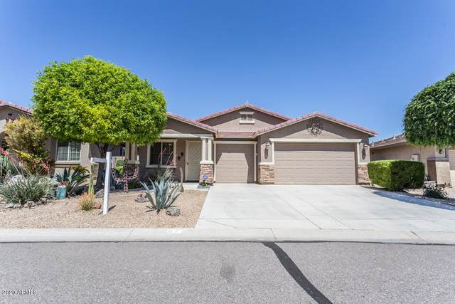 872 E Cierra Circle, San Tan Valley, AZ 85143 (MLS #6063649) :: Selling AZ Homes Team
