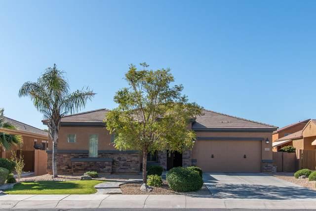 15373 W Westview Drive, Goodyear, AZ 85395 (MLS #6063673) :: The Garcia Group
