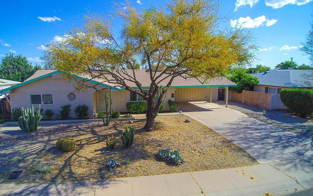 8119 E Sheridan Street, Scottsdale, AZ 85257 (MLS #6063685) :: Conway Real Estate