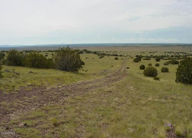 29 Elm Lane, Concho, AZ 85924 (MLS #6063711) :: Long Realty West Valley