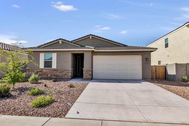 7197 E Gamebird Way, San Tan Valley, AZ 85143 (MLS #6063714) :: Dijkstra & Co.