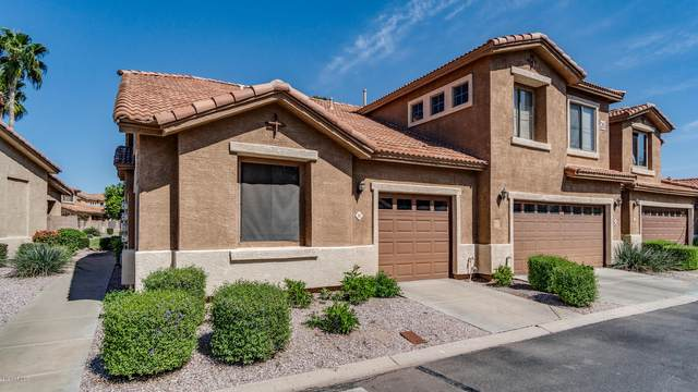 5415 E Mckellips Road #91, Mesa, AZ 85215 (MLS #6063724) :: Selling AZ Homes Team