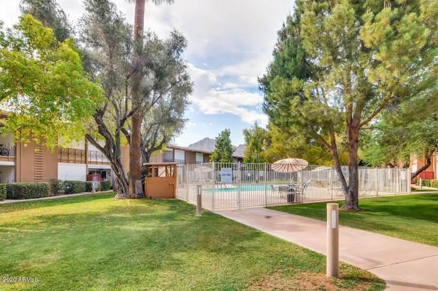 6125 E Indian School Road #271, Scottsdale, AZ 85251 (MLS #6063776) :: Dave Fernandez Team   HomeSmart