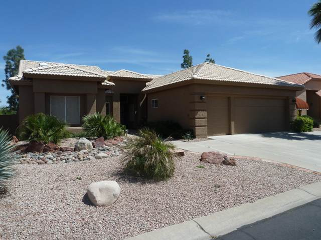26001 S Flame Tree Drive, Sun Lakes, AZ 85248 (MLS #6063821) :: Riddle Realty Group - Keller Williams Arizona Realty