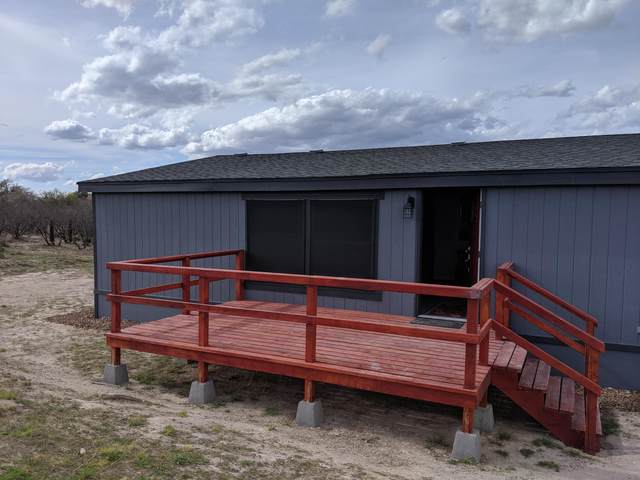 9339 E Ramsey Road, Sierra Vista, AZ 85650 (MLS #6063837) :: Conway Real Estate