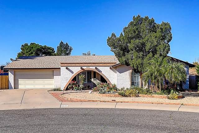 8234 N 52ND Avenue, Glendale, AZ 85302 (MLS #6063860) :: Dave Fernandez Team | HomeSmart