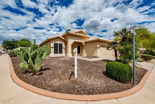 4432 E Badger Way, Phoenix, AZ 85044 (MLS #6063864) :: Devor Real Estate Associates
