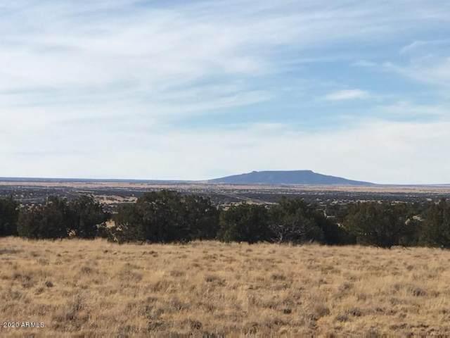 6069 Wide Sky Road, Holbrook, AZ 86025 (MLS #6063867) :: Keller Williams Realty Phoenix