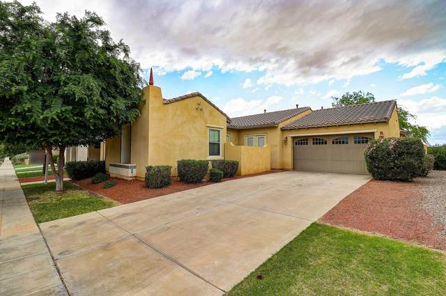 13486 N 154TH Lane, Surprise, AZ 85379 (MLS #6063919) :: CC & Co. Real Estate Team