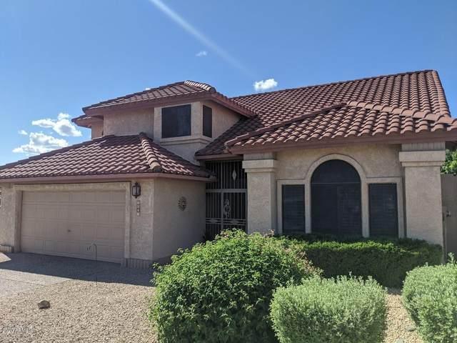 1807 E Friess Drive, Phoenix, AZ 85022 (MLS #6063932) :: The Property Partners at eXp Realty