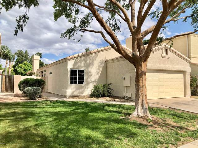 1221 N Cliffside Drive, Gilbert, AZ 85234 (MLS #6063964) :: Lifestyle Partners Team