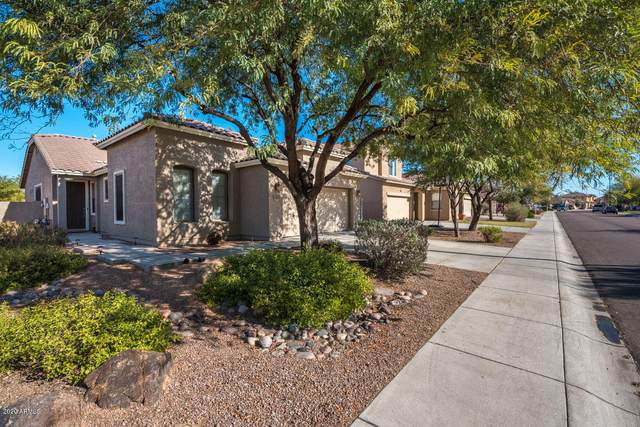 3452 E Riopelle Avenue, Gilbert, AZ 85298 (MLS #6064033) :: Revelation Real Estate