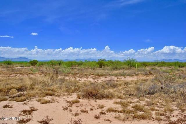0 E Arzberger Road, Willcox, AZ 85643 (MLS #6064101) :: Kortright Group - West USA Realty