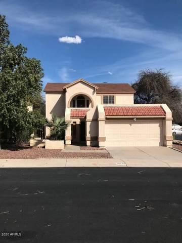 19229 N 6TH Street, Phoenix, AZ 85024 (MLS #6064157) :: CC & Co. Real Estate Team