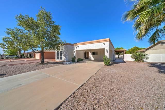 26442 S Nicklaus Drive, Sun Lakes, AZ 85248 (MLS #6064169) :: The Luna Team