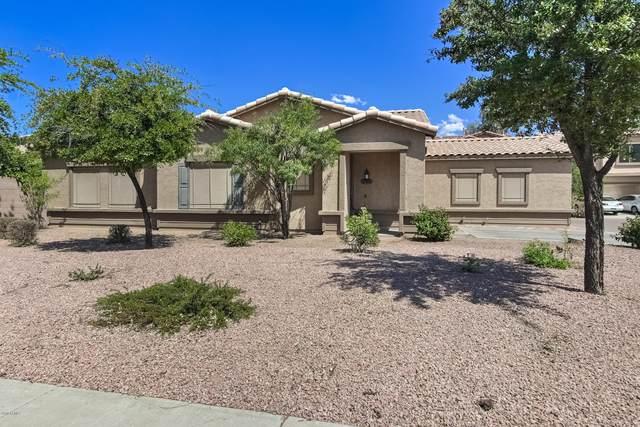 6267 S Teresa Drive, Chandler, AZ 85249 (MLS #6064176) :: Revelation Real Estate