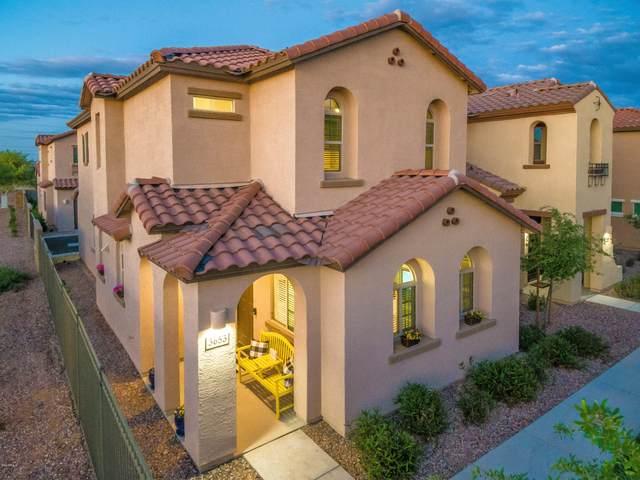 3653 E Honeysuckle Drive, Chandler, AZ 85286 (MLS #6064186) :: Keller Williams Realty Phoenix