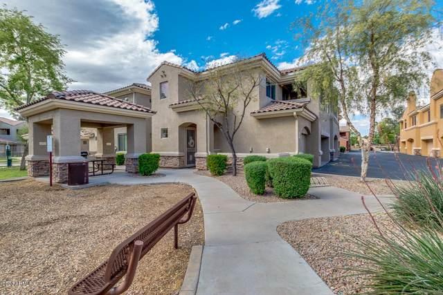 955 E Knox Road #240, Chandler, AZ 85225 (MLS #6064187) :: Keller Williams Realty Phoenix