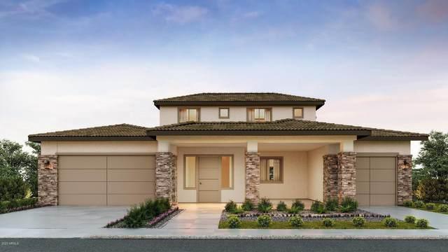17191 W Thousand Oaks Street, Surprise, AZ 85388 (MLS #6064192) :: The W Group